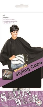Picture of WINDOW STYLING CAPE